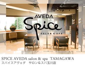 spice_tamagawa.jpg